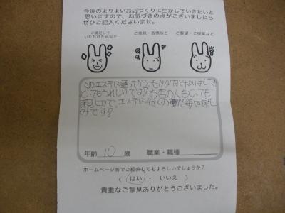 voice_20130615